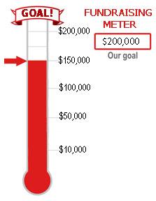 Fundraising Meter